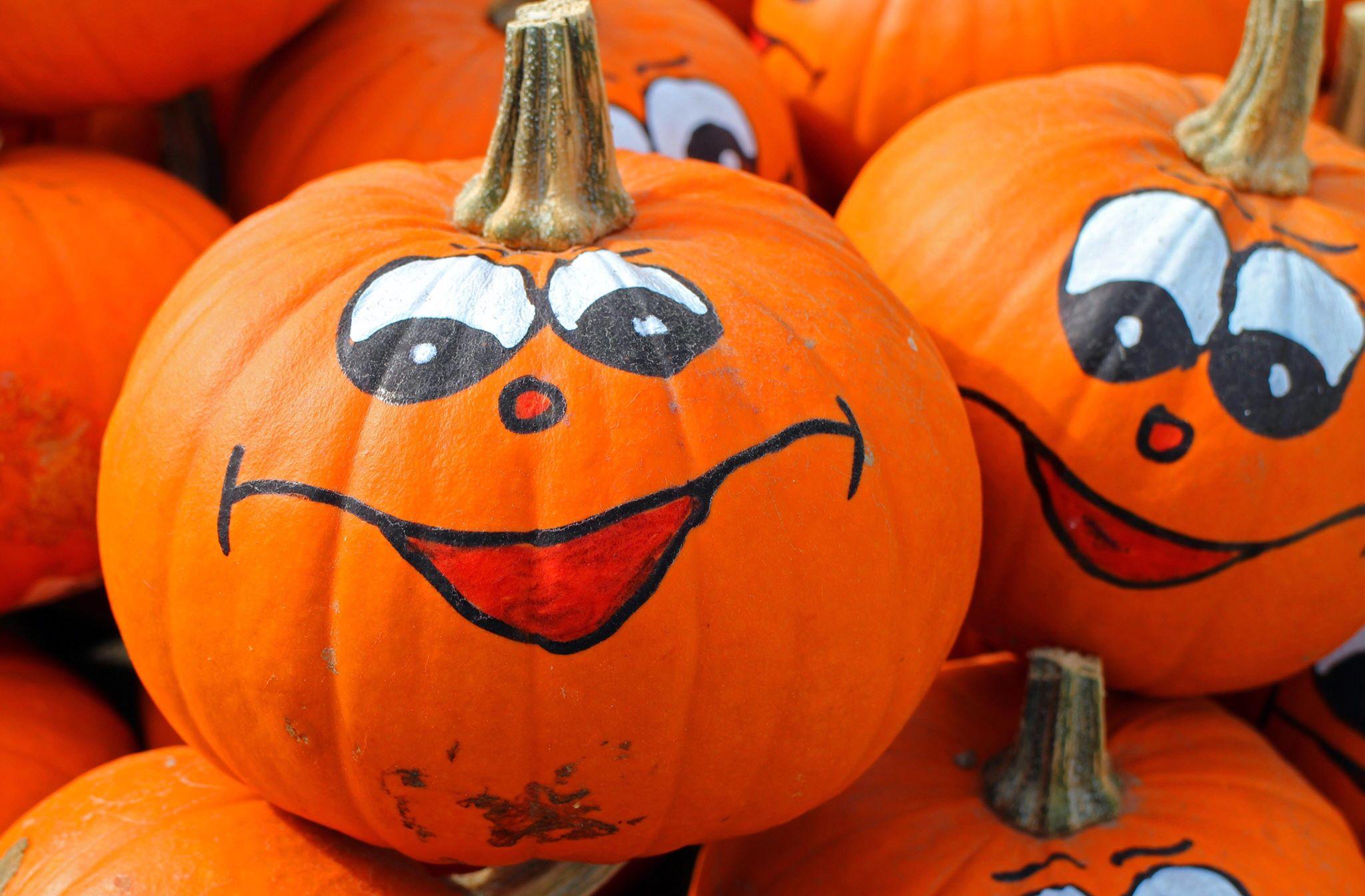 Halloween: fatti e curiosita' da brivido